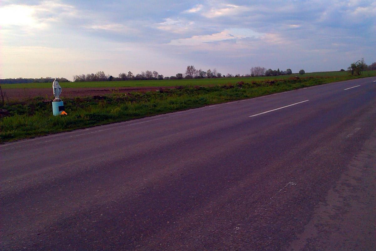 Вид на сторону дороги