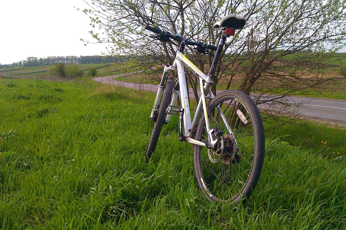 Велосипед, припаркований на боці пишної зеленої області