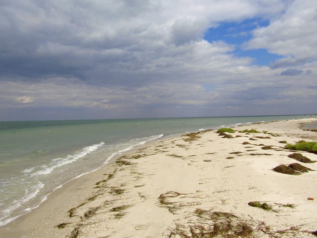 Піщаний пляж поруч з океаном