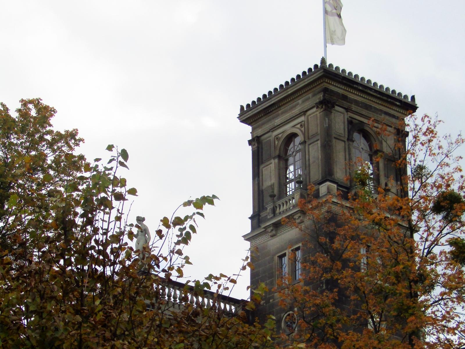 Висока годинникова вежа з деревами у фоновому режимі