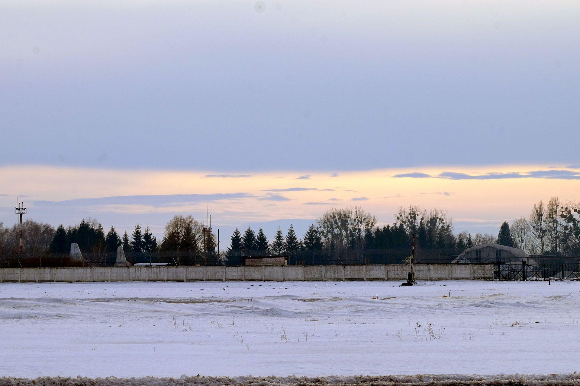 Зграя чайок стоїть у снігу