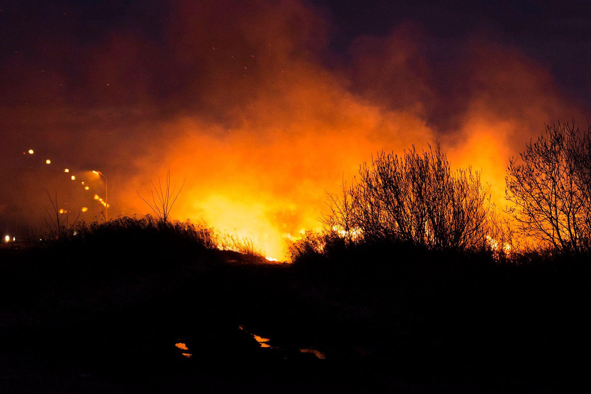 Пожежа в полі