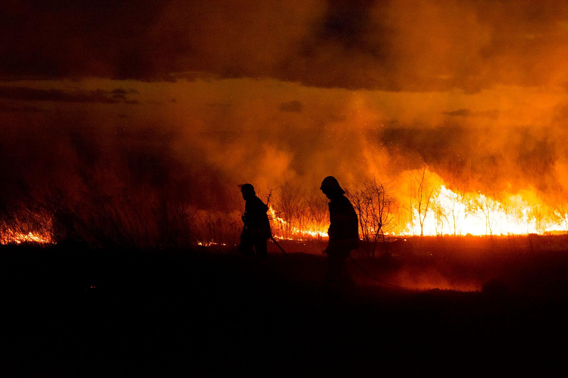 Пожежні гасять вогонь в полі