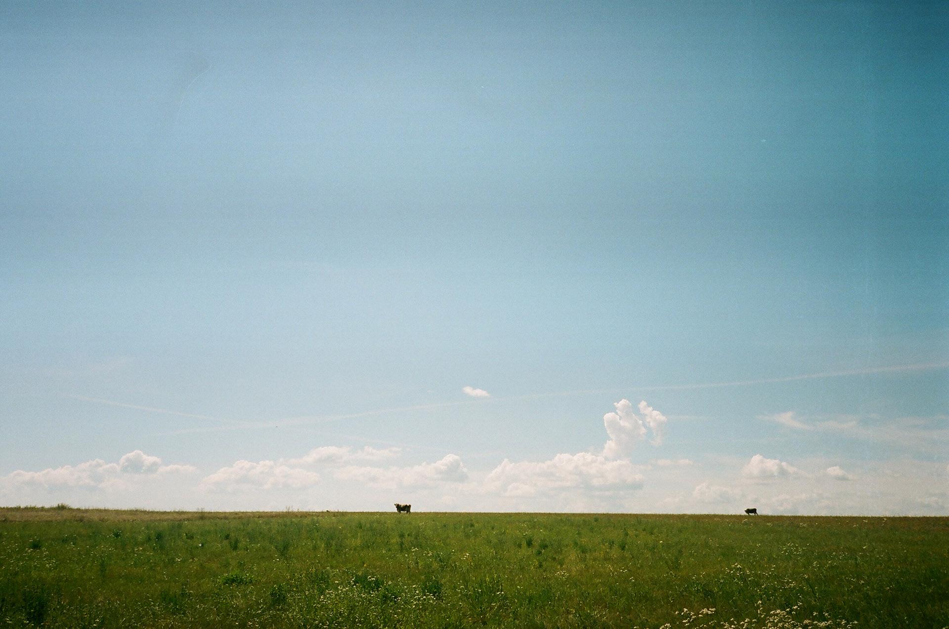 Група людей, що стоять на пишному зеленому полі