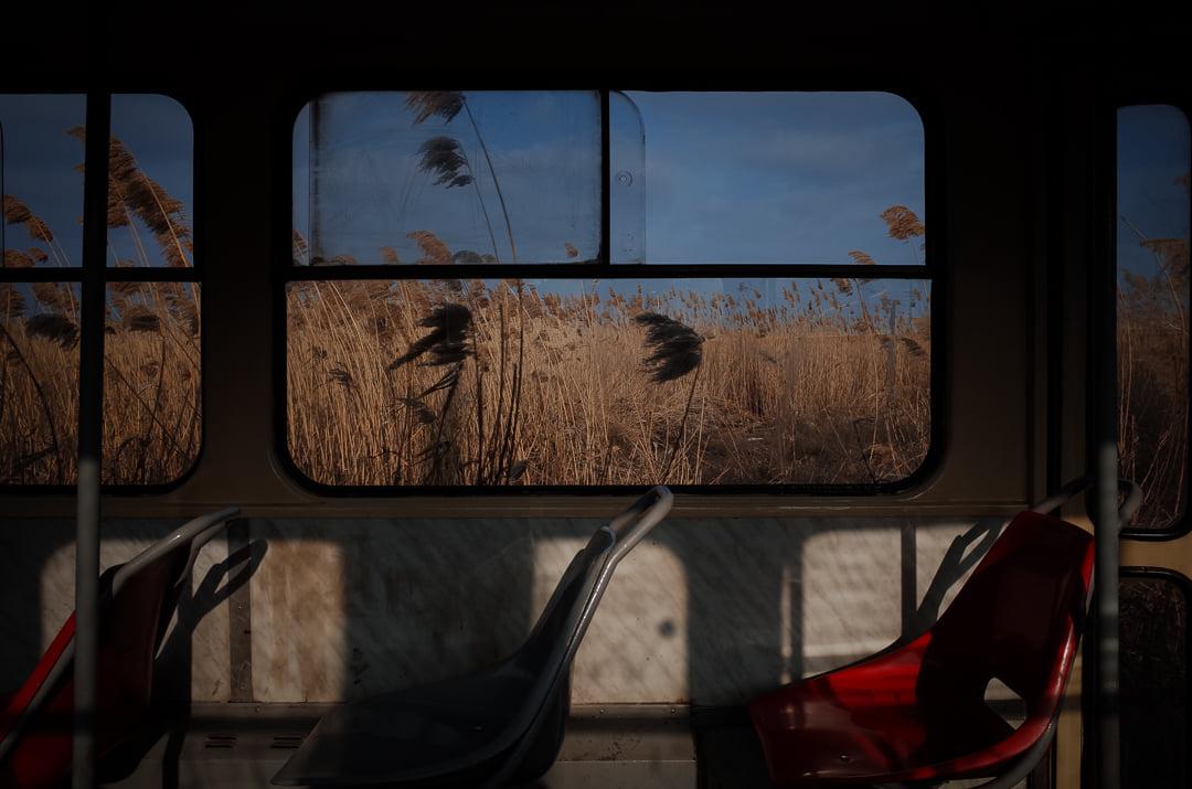 Вид вікна шини